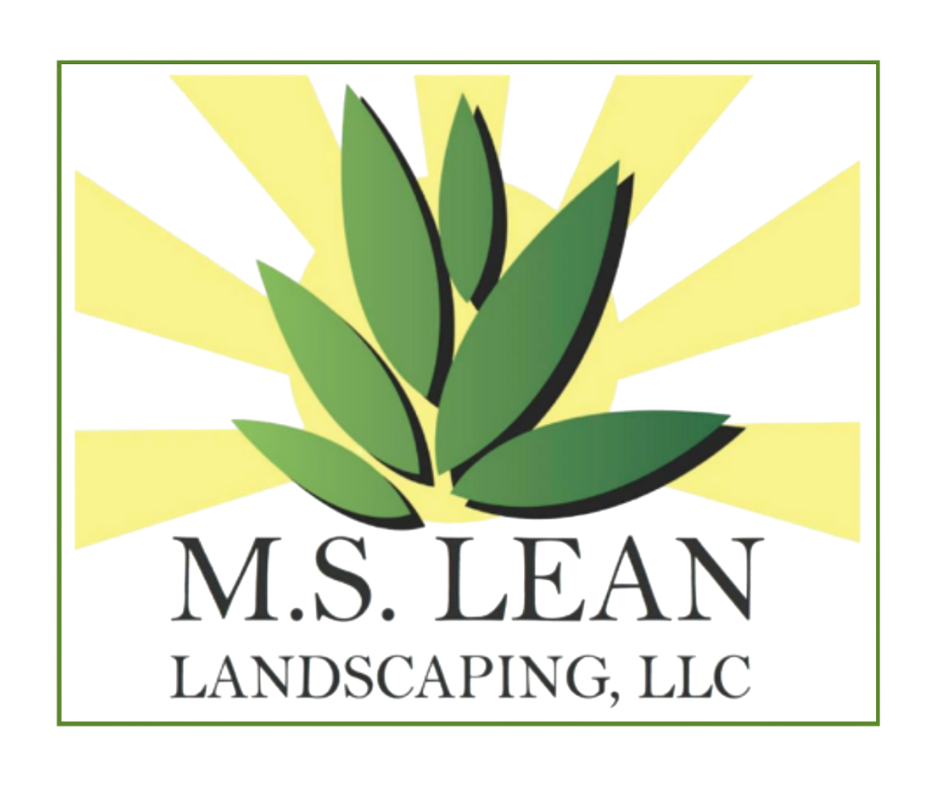 MS Lean Landscaping